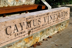 caymus sign3