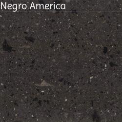 Negro America