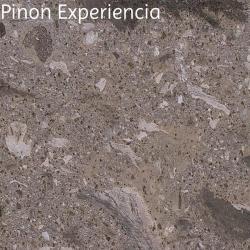 Pinon Experiencia