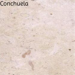 Conchulea
