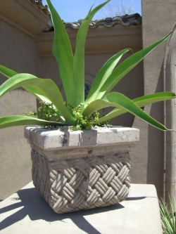 Visionmakers Planter  72