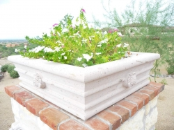 Visionmakers Planter  9